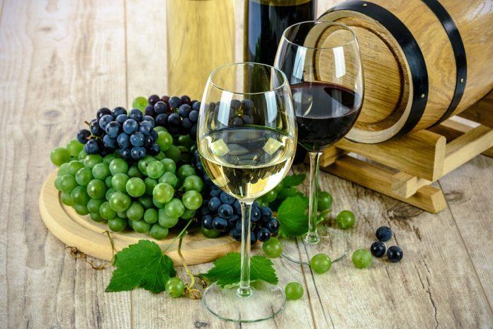 degustazione vini ancona