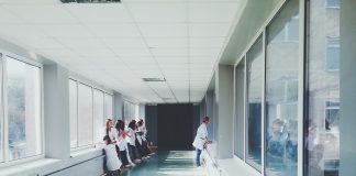 Topi-ospedale-ancona